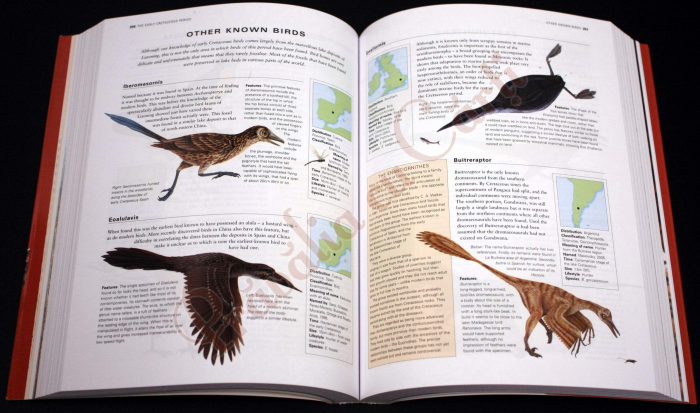 The Complete Illustrated Encyclopedia of DINOSAURS & Prehistoric Creatures 2