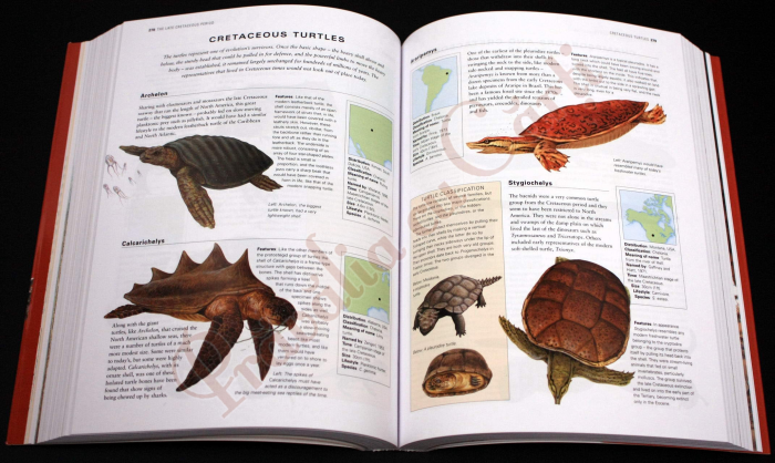 The Complete Illustrated Encyclopedia of DINOSAURS & Prehistoric Creatures 3
