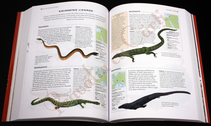 The Complete Illustrated Encyclopedia of DINOSAURS & Prehistoric Creatures 4