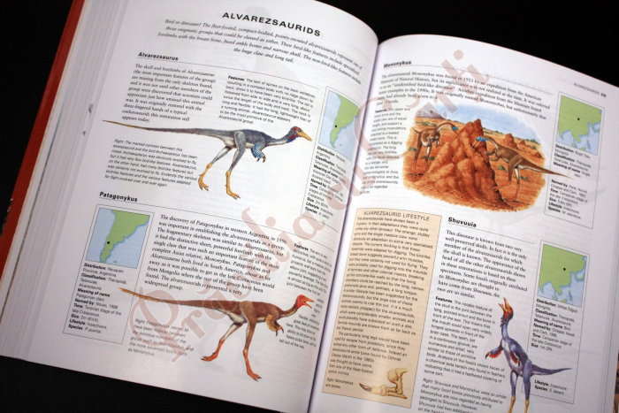 The Complete Illustrated Encyclopedia of DINOSAURS & Prehistoric Creatures 6