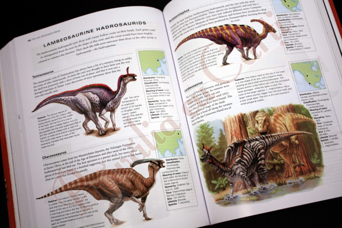 The Complete Illustrated Encyclopedia of DINOSAURS & Prehistoric Creatures 7