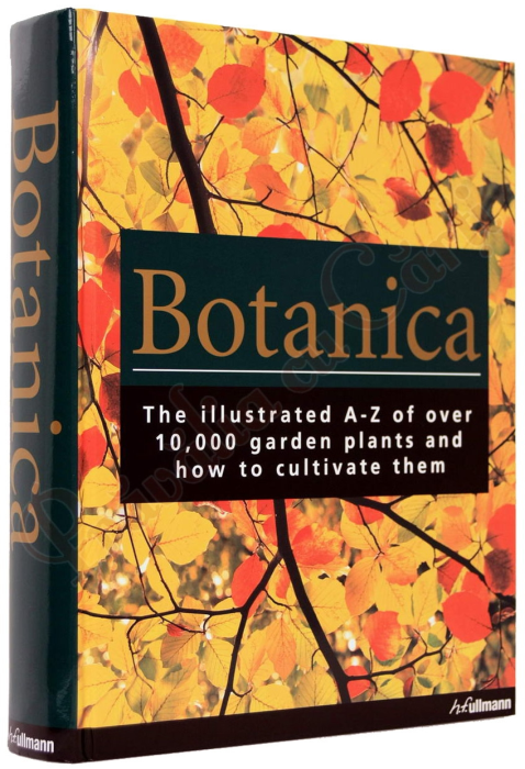 Botanica: The Illustrated A-Z of Over 10,000 Garden Plants and How to Cultivate Them 1