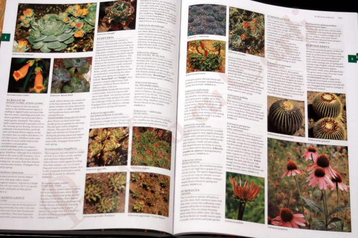 Botanica: The Illustrated A-Z of Over 10,000 Garden Plants and How to Cultivate Them 2