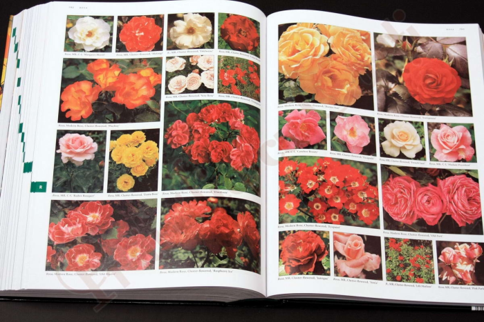 Botanica: The Illustrated A-Z of Over 10,000 Garden Plants and How to Cultivate Them 10
