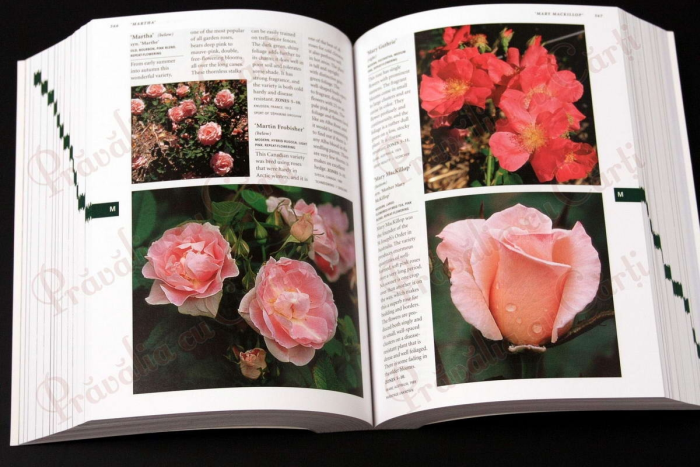 Botanica's Pocket - ROSES - over 1000 pages & over 2000 roses listed 2
