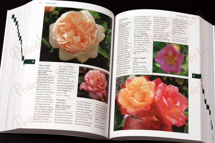Botanica's Pocket - ROSES - over 1000 pages & over 2000 roses listed 3