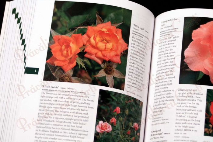 Botanica's Pocket - ROSES - over 1000 pages & over 2000 roses listed 5