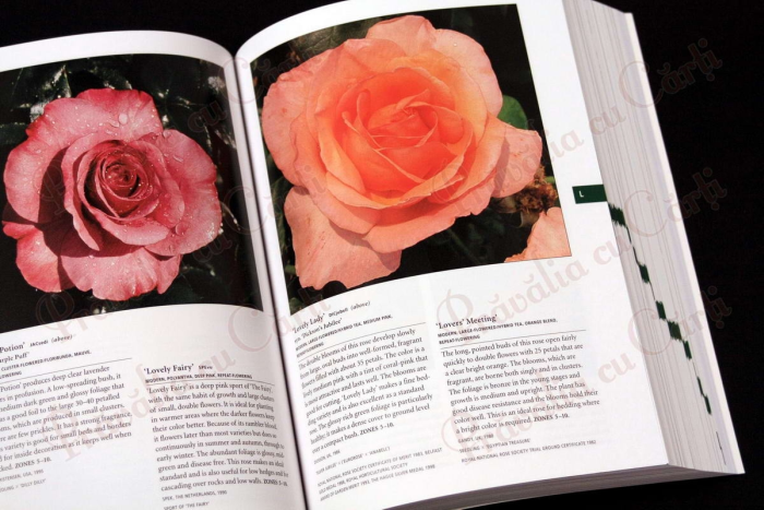 Botanica's Pocket - ROSES - over 1000 pages & over 2000 roses listed 6
