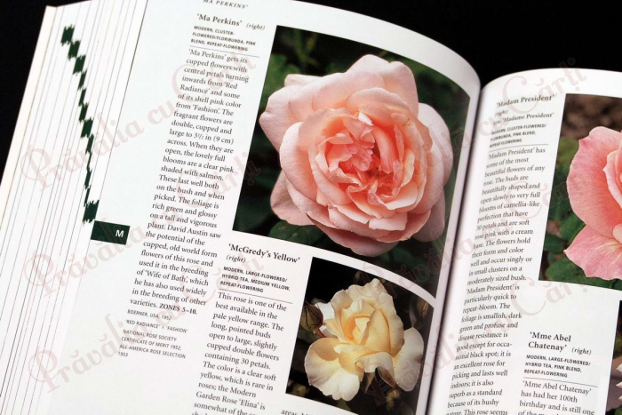 Botanica's Pocket - ROSES - over 1000 pages & over 2000 roses listed 7