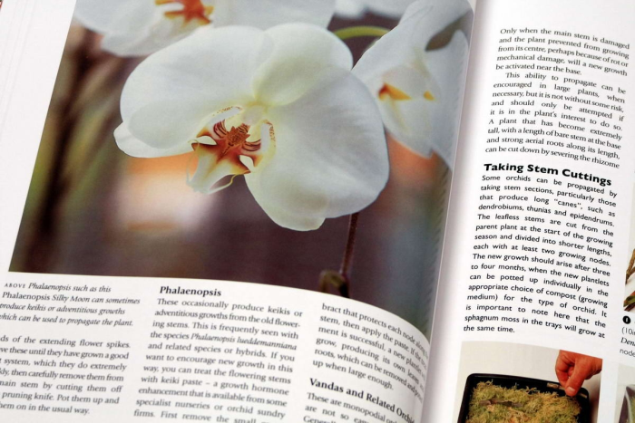 Growing ORCHIDS. The Complete Practical Guide to Orchids and Their Cultivation 4