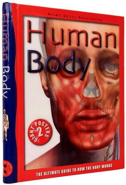 Human Body. The Ultimate Guide to How the Body Works 0