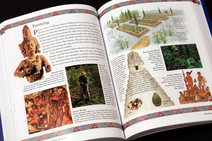 The Childrens Ilustrated Encyclopedia of the ANCIENT WOLRD 3
