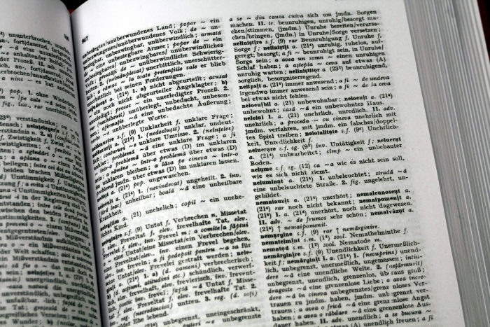Dictionar Roman German 2