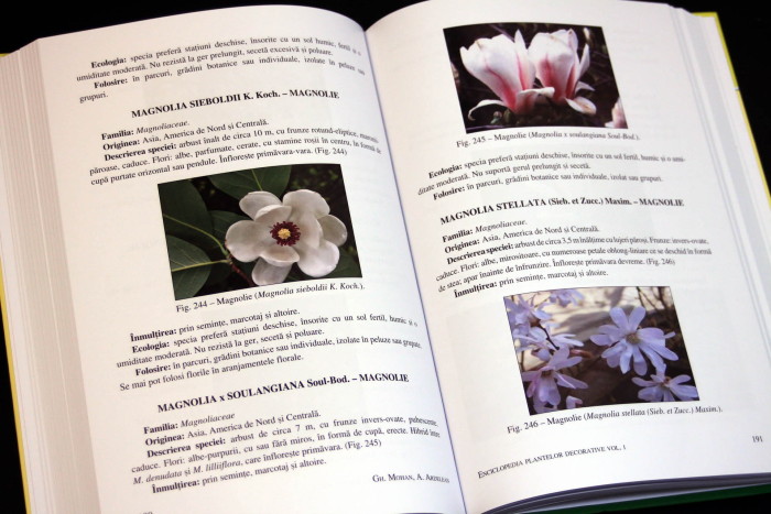 Enciclopedia plantelor decorative - Volumul 1 - ARBORI SI ARBUSTI 2