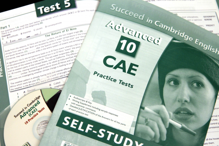 Succeed in Cambridge CAE. 10 Practice Tests. New 2015 Format 5
