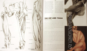 Anatomy for the Artist1