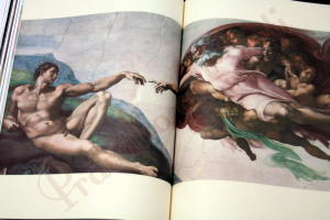 Michelangelo : The Complete Sculpture, Painting, Architecture6