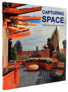 Capturing Space: Dramatic Ideas for Reshaping Your Home1