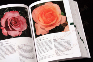 Botanica's Pocket - ROSES - over 1000 pages & over 2000 roses listed6