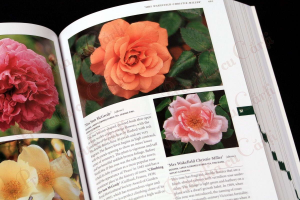 Botanica's Pocket - ROSES - over 1000 pages & over 2000 roses listed8
