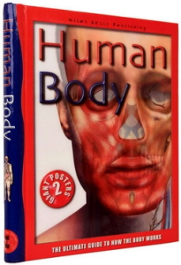 Human Body. The Ultimate Guide to How the Body Works0