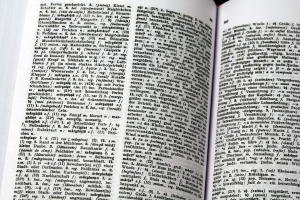Dictionar Roman German1