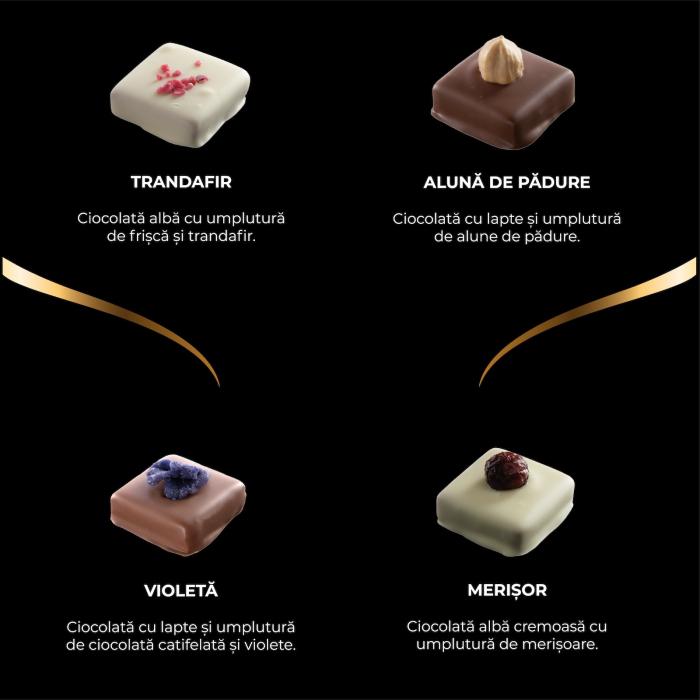 Asortiment premium 9 praline de ciocolata cu umplutura 2
