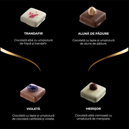 Asortiment premium 9 praline de ciocolată cu umplutură2