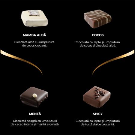 Asortiment premium 9 praline de ciocolată cu umplutură1