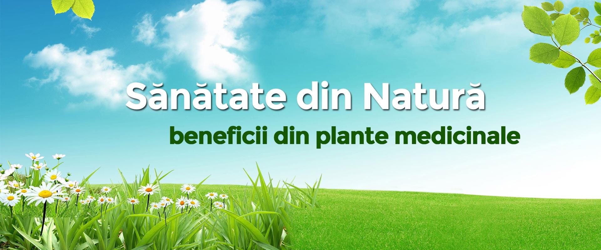 Beneficii pentru sanatatea ta NATURAL. Plantele: Farmacia Naturii.