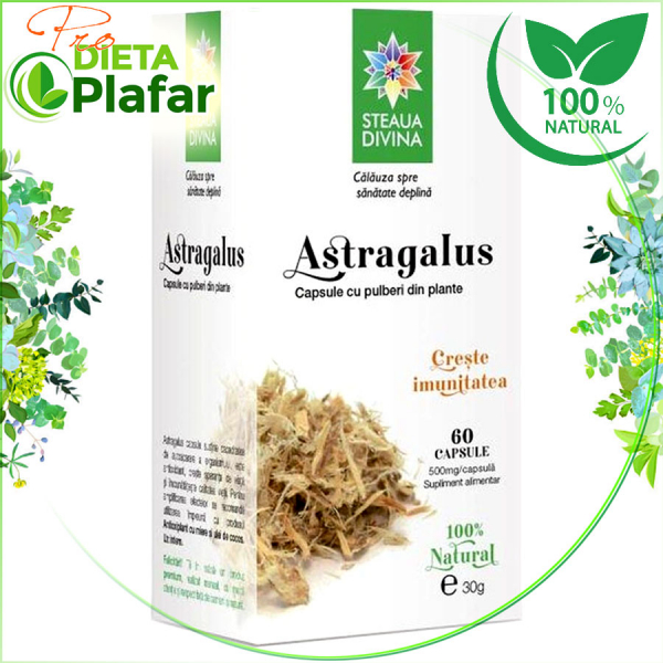 Astragalus capsule sustine sistemul imnitar, capacitatea de autoaparare a organismului. Astragalus este eficient pentru o imunitate buna.