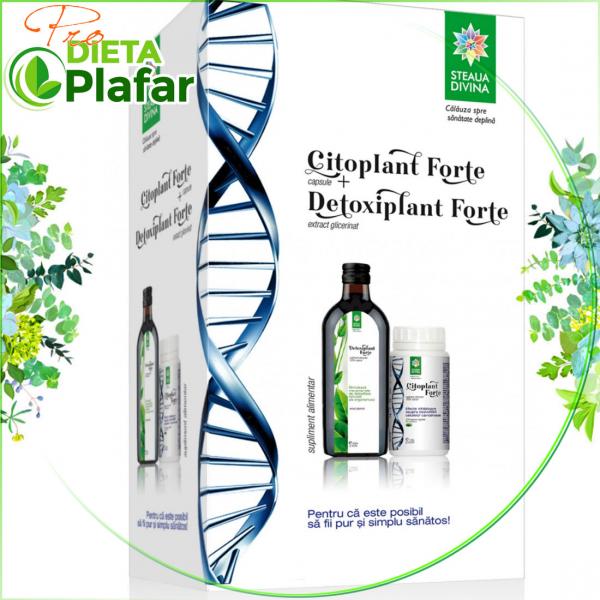 Detoxifierea organismului si a ficatului cu extract lichid si capsule din plante medicinale.
