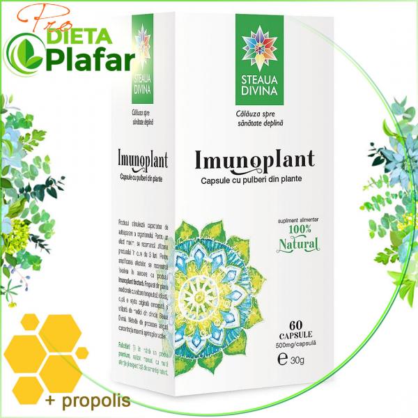 ImunoPlant este un produs pentru întărirea sistemului imunitar pe bază de plante medicinale, fructe bogate în vitamina C și propolis.