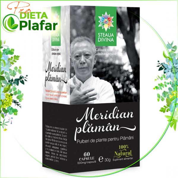 Meridian Plaman capsule este un amestec de pulberi din 19 plante medicinale ce contribuie la mentinerea in stare optima a plamanilor, dar ne ajuta si sa avem o imunitate excelenta, ne protejeaza de frig si de raceli.