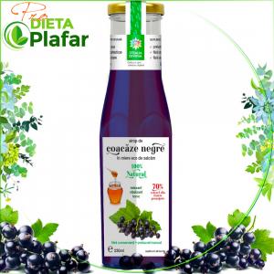 Sirop de COACAZE NEGRE cu miere Bio de Salcam 230 ml. Tratament naturist acid uric marit.