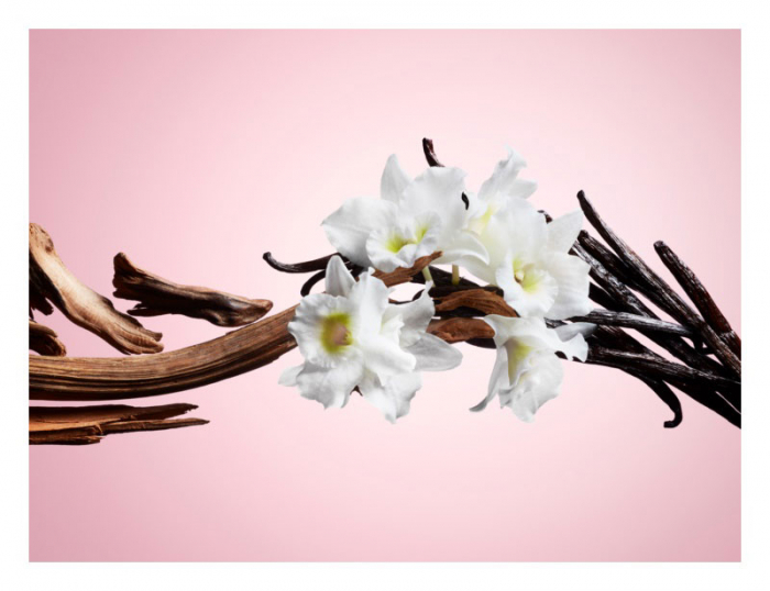Apa de Toaleta NUVO Parfums XOXO Pour Femme EDT, 100 ml-big