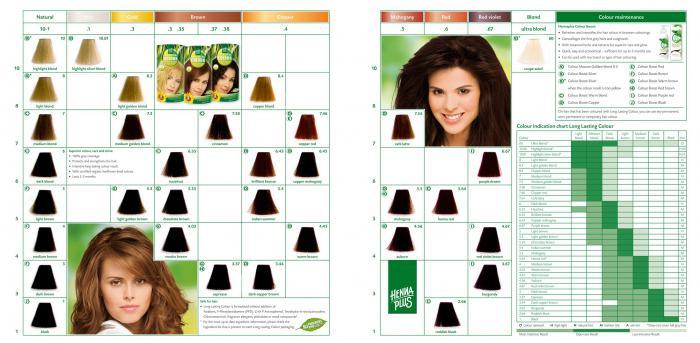 Vopsea de Par HennaPlus Long Lasting Colour - Dark Cooper Brown 3.44-big