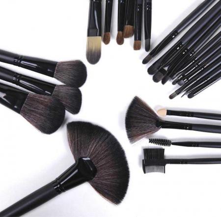 Set de 24 Pensule Profesionale Top Quality Lilyz, mix de par natural, Black6