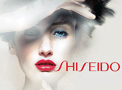 Creion Corector Shiseido The Makeup - Light-big