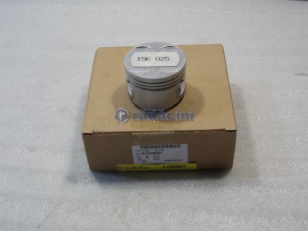 Piston motor R1 (025)  15 cod S1220001