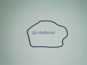 Inel termostat   cod 09157001