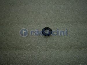 Oring injector   cod 25169195