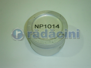 Piston motor R2 (050)  cod NP1014