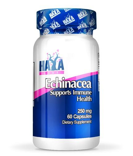 Haya Labs Echinacea 250 mg 60 caps [0]