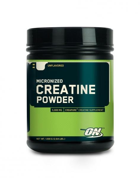 ON Creatine Powder 317g
