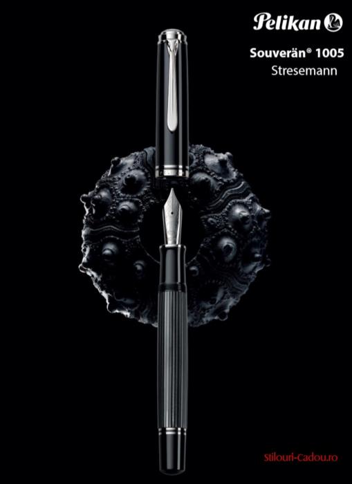 Stilou Souveran M1005 Stresemann Pelikan 2