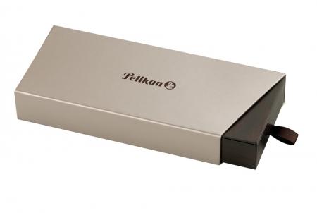 Stilou Premium M120N Verde Negru Pelikan  - Editie Speciala2