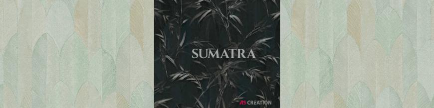 Catalog tapet Sumatra