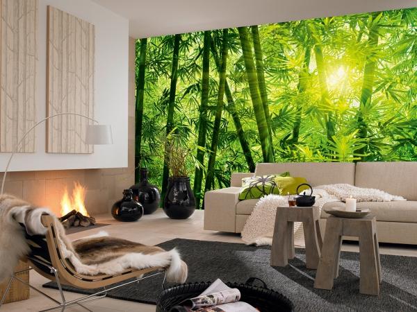 Fototapet 00123 Padurea de bambus 2