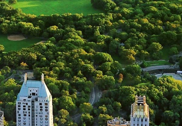 Fototapet 00163 Central Park NY 1